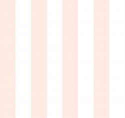 BISCUIT - Çizgili Duvar Kağıdı 3